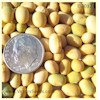 Bei Liang 11 Soybean<br>Sold Out for 2014
