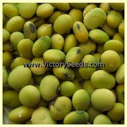 Blackeye Soybean<br>Sold Out for 2015