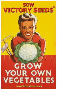 Click here for Victory Heirloom Vegetable seeds for your survival garden.