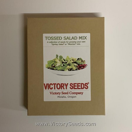 Tossed Salad Mix (aka Mesclun or Spring Salad Mix) Collection<br><b>SOLD OUT - Please Check Back</b>