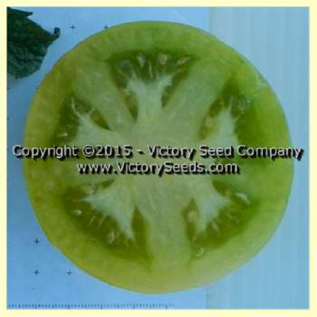 Dwarf Kelly Green Tomato